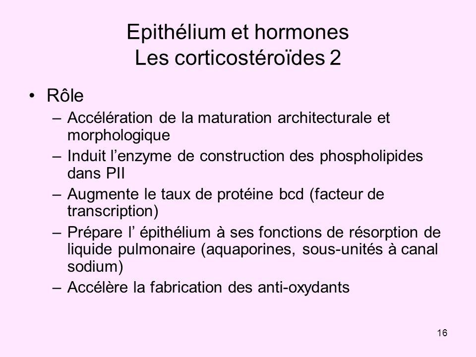 Epithélium et hormones Les corticostéroïdes 2