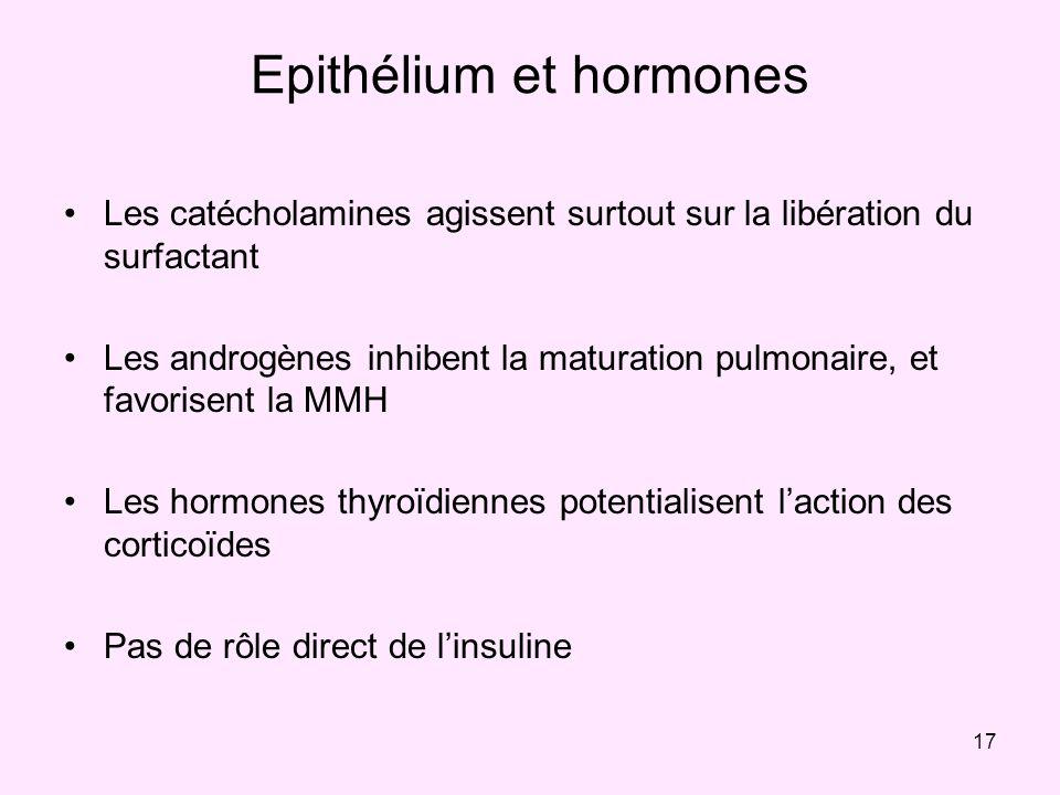 Epithélium et hormones