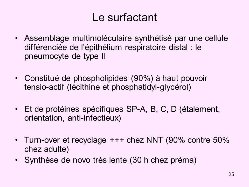 Le surfactantAssemblage multimoléculaire synthétisé par une cellule différenciée de l'épithélium respiratoire distal : le pneumocyte de type II.
