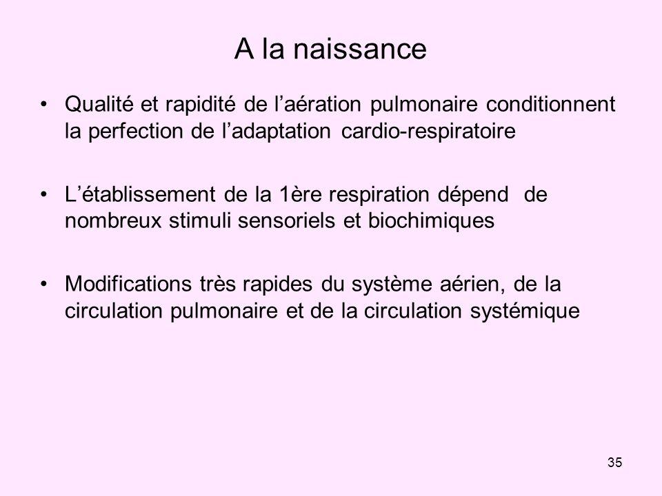 A la naissance Qualité et rapidité de l'aération pulmonaire conditionnent la perfection de l'adaptation cardio-respiratoire.