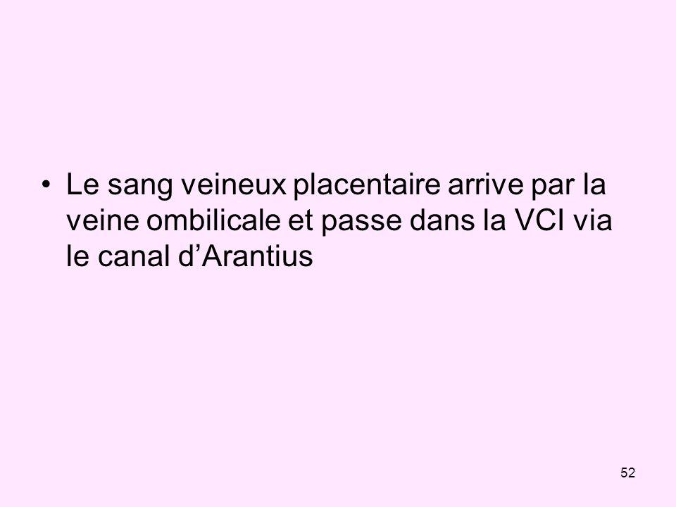 Le sang veineux placentaire arrive par la veine ombilicale et passe dans la VCI via le canal d'Arantius