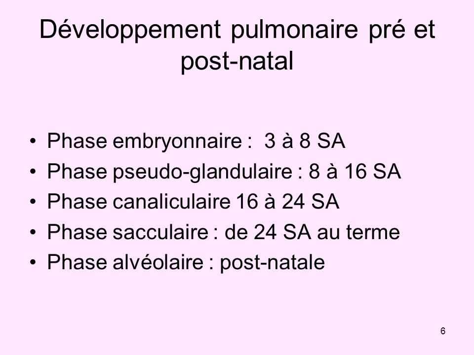 Développement pulmonaire pré et post-natal