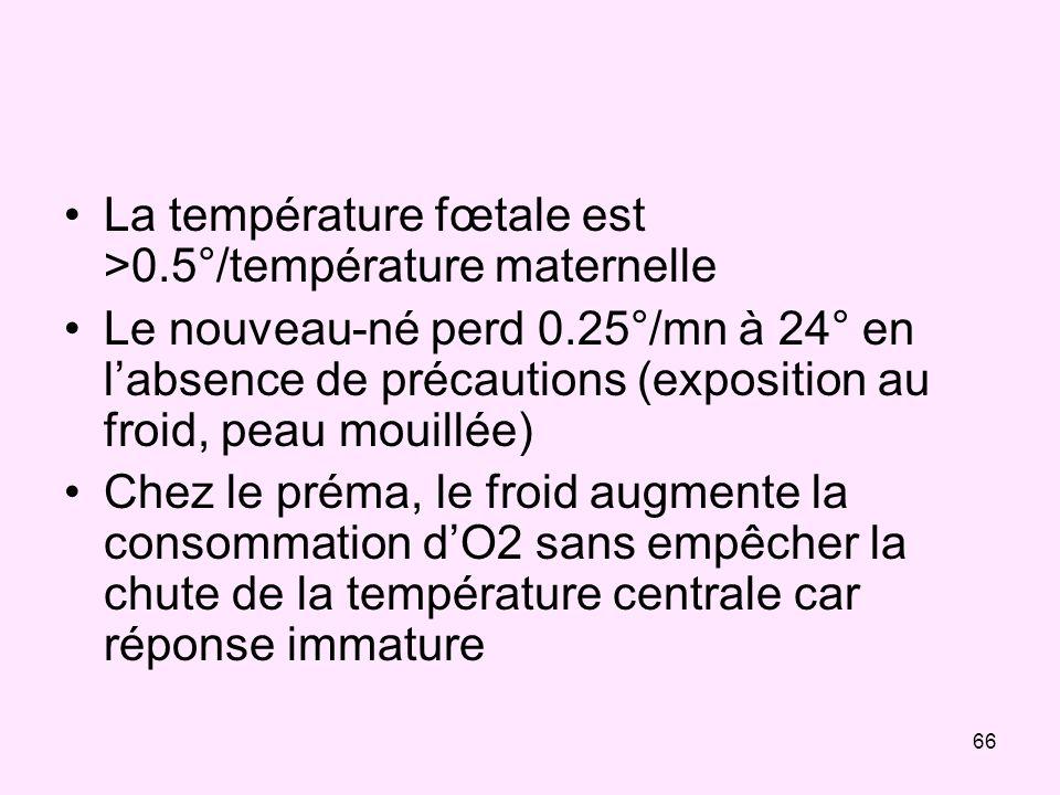 La température fœtale est >0.5°/température maternelle