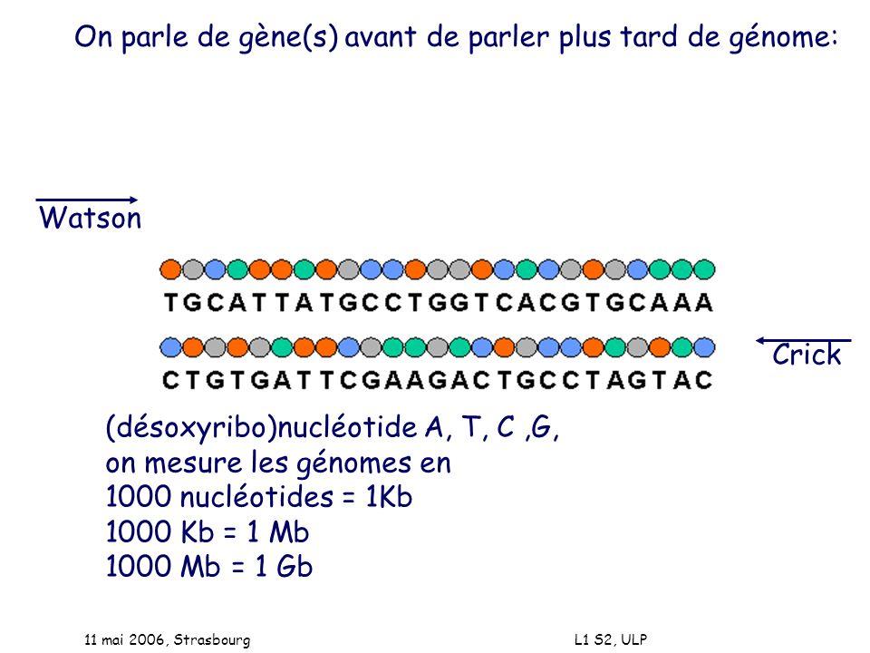 On parle de gène(s) avant de parler plus tard de génome: