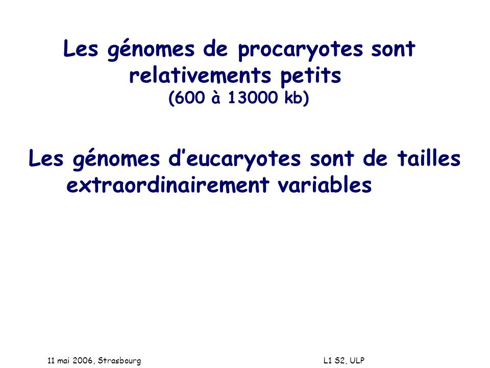 Les génomes de procaryotes sont relativements petits