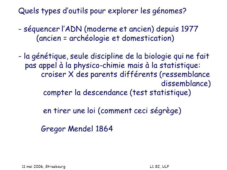 Quels types d'outils pour explorer les génomes