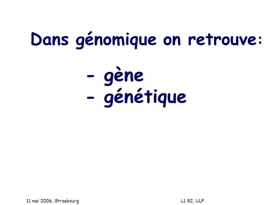 - génétique Dans génomique on retrouve: - gène 11 mai 2006, Strasbourg