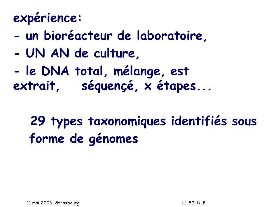 - un bioréacteur de laboratoire, - UN AN de culture,