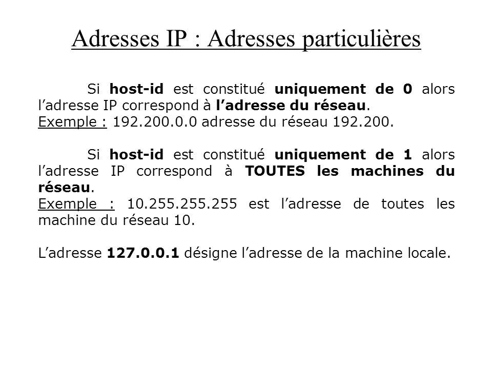 Adresses IP : Adresses particulières