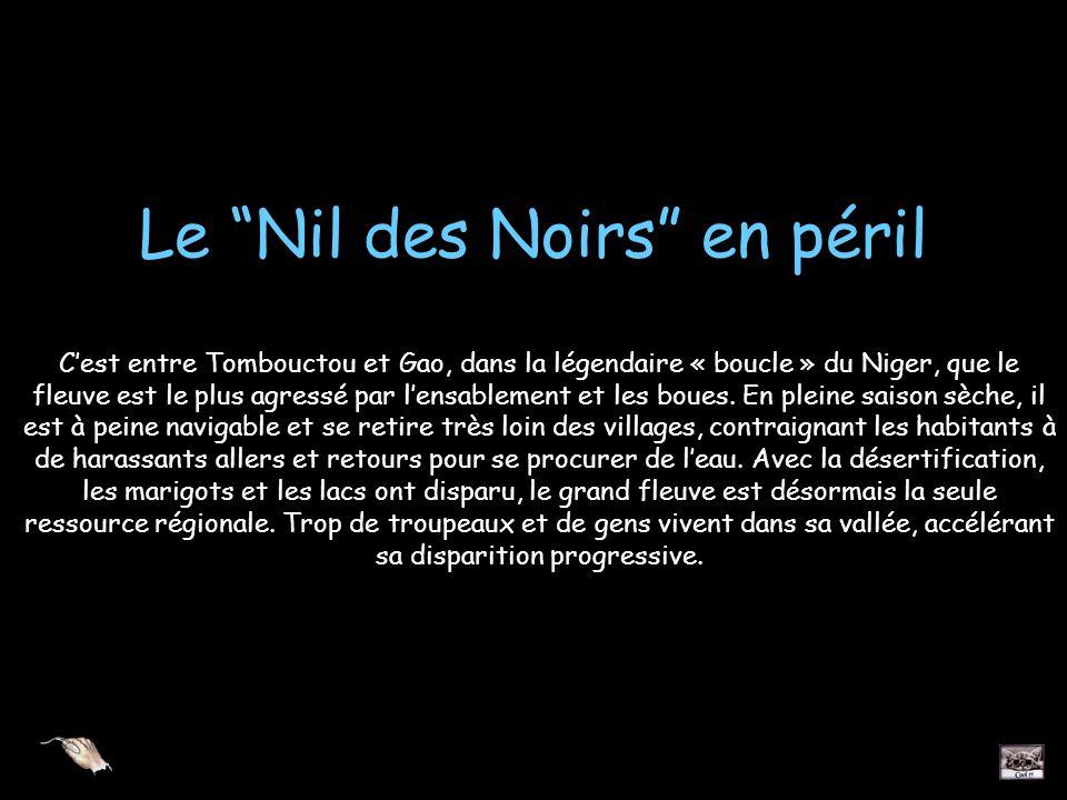 Le Nil des Noirs en péril