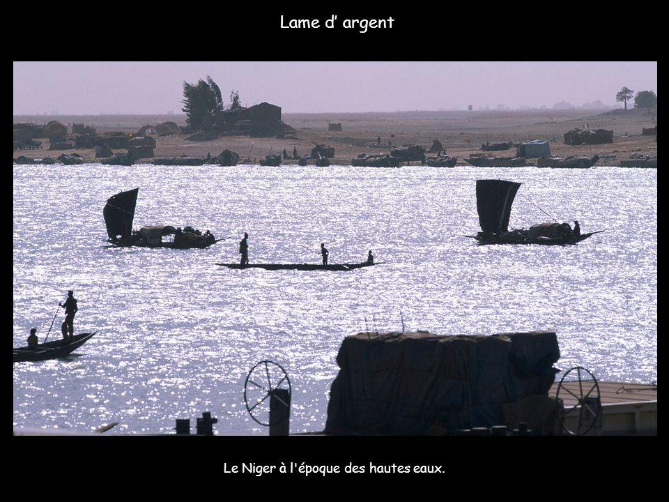 Le Niger à l époque des hautes eaux.