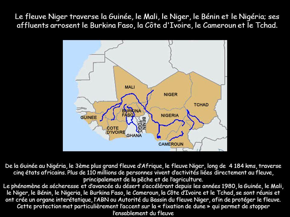 Le fleuve Niger traverse la Guinée, le Mali, le Niger, le Bénin et le Nigéria; ses affluents arrosent le Burkina Faso, la Côte d Ivoire, le Cameroun et le Tchad.