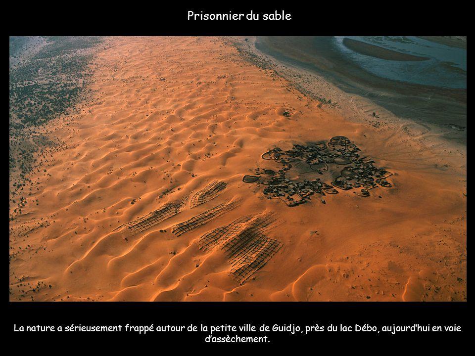 Prisonnier du sable La nature a sérieusement frappé autour de la petite ville de Guidjo, près du lac Débo, aujourd'hui en voie d'assèchement.