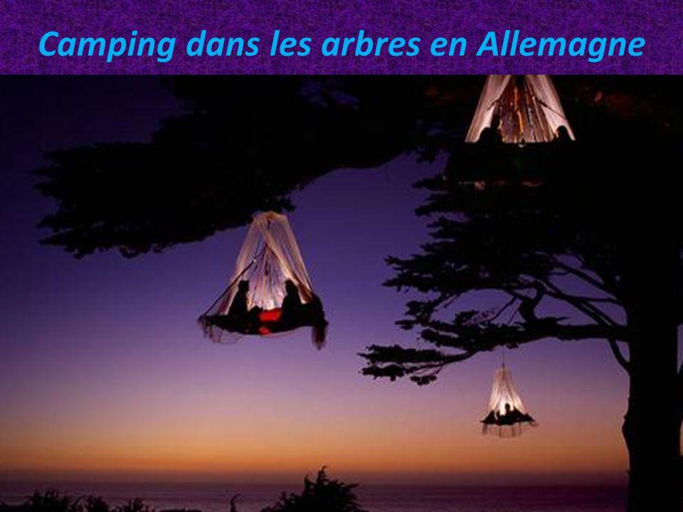 Camping dans les arbres en Allemagne