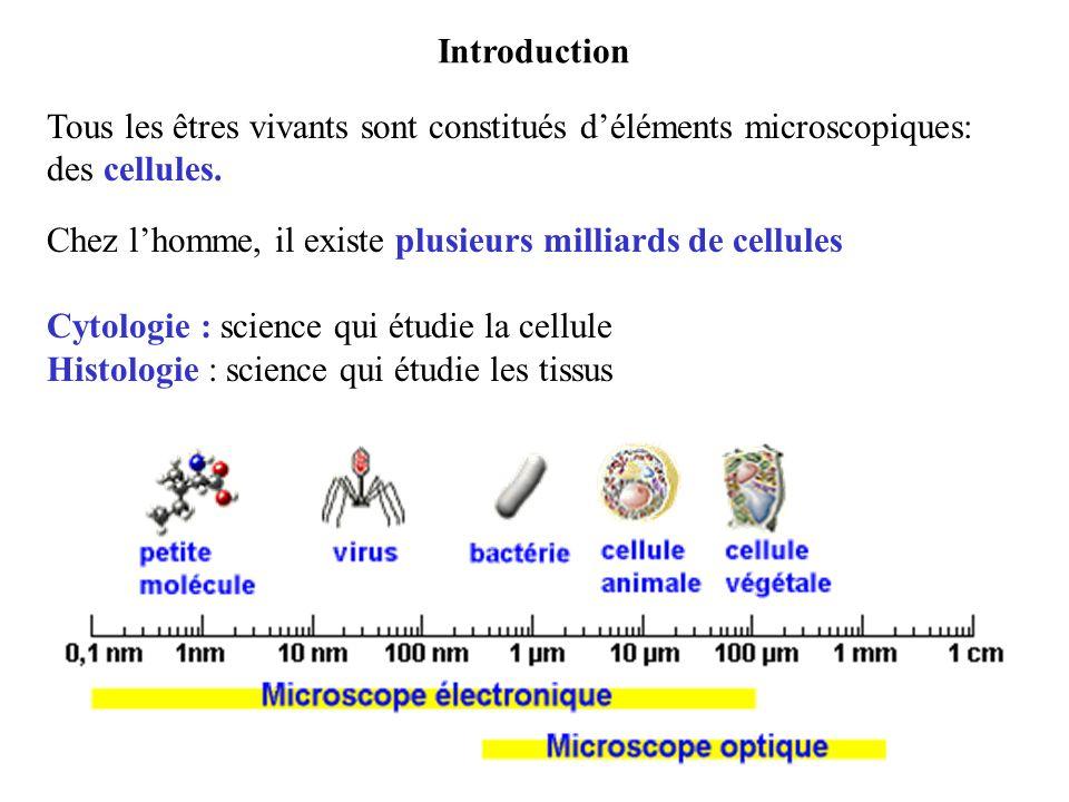 Introduction Tous les êtres vivants sont constitués d'éléments microscopiques: des cellules. Chez l'homme, il existe plusieurs milliards de cellules.