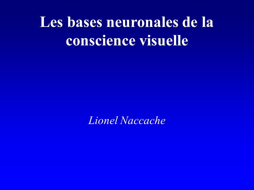 Les bases neuronales de la
