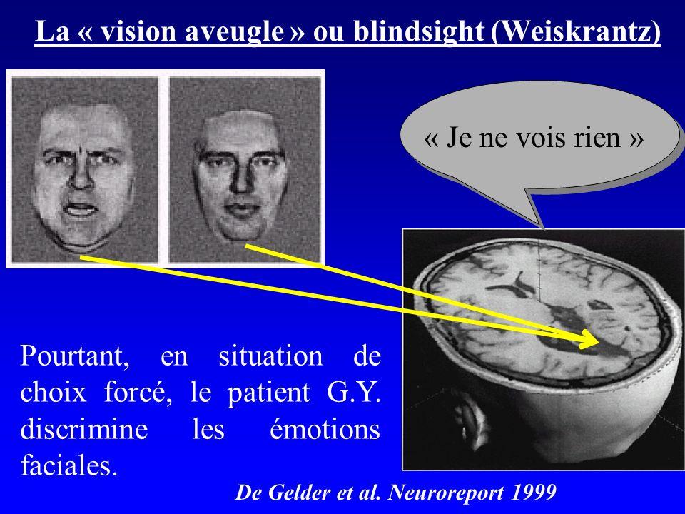 La « vision aveugle » ou blindsight (Weiskrantz)