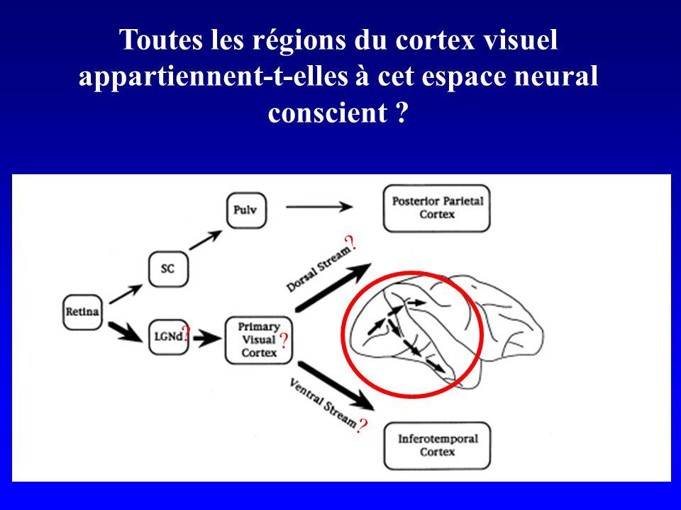 Toutes les régions du cortex visuel appartiennent-t-elles à cet espace neural conscient