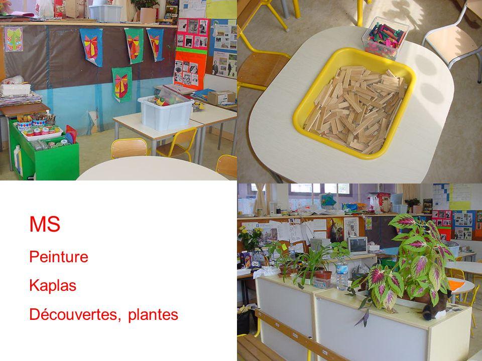MS Peinture Kaplas Découvertes, plantes