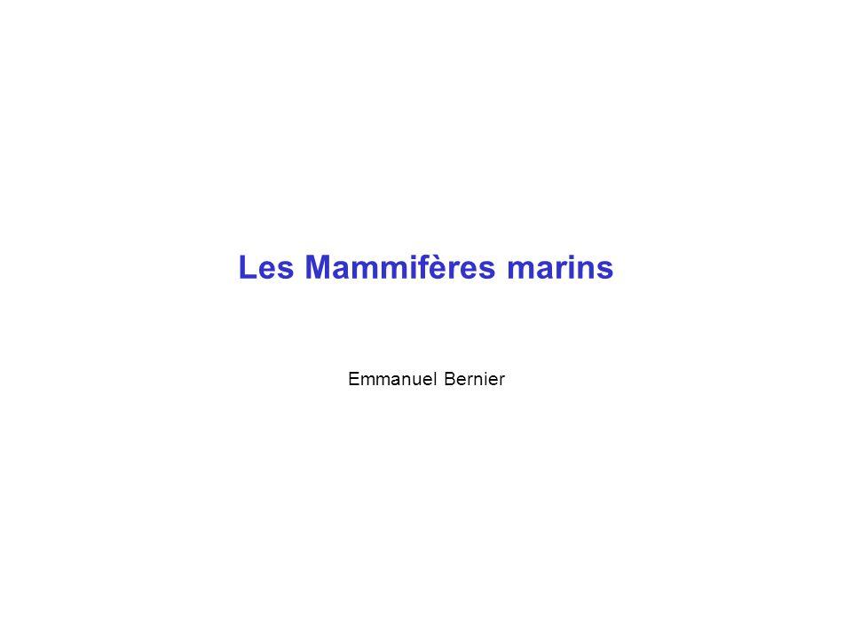 Les Mammifères marins Emmanuel Bernier