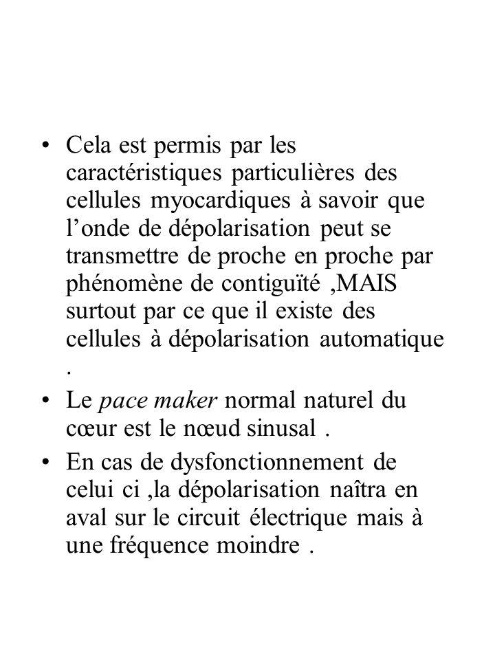 Cela est permis par les caractéristiques particulières des cellules myocardiques à savoir que l'onde de dépolarisation peut se transmettre de proche en proche par phénomène de contiguïté ,MAIS surtout par ce que il existe des cellules à dépolarisation automatique .