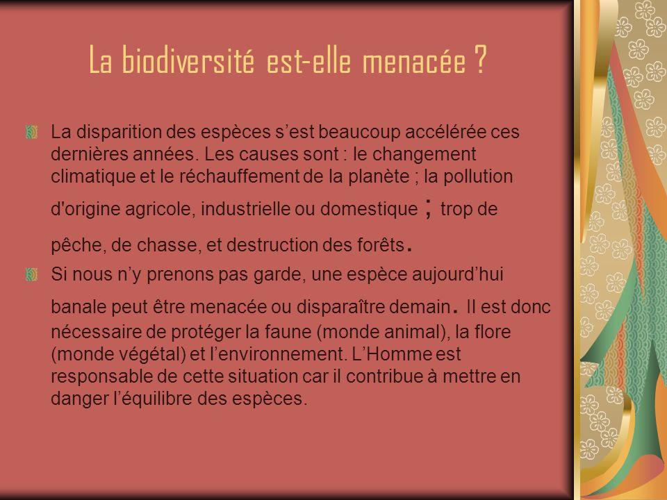 La biodiversité est-elle menacée