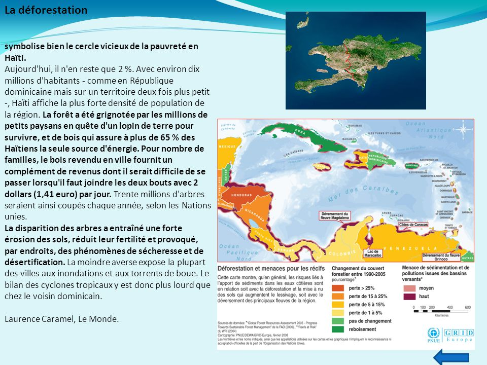 La déforestation symbolise bien le cercle vicieux de la pauvreté en Haïti.
