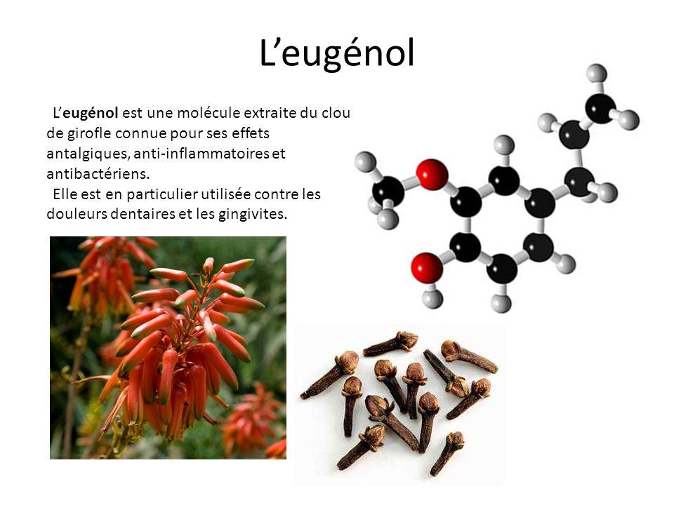 L'eugénol L'eugénol est une molécule extraite du clou de girofle connue pour ses effets antalgiques, anti-inflammatoires et antibactériens.