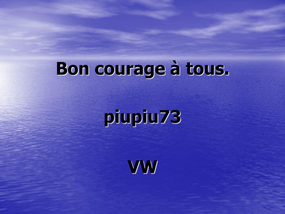 Bon courage à tous. piupiu73 VW