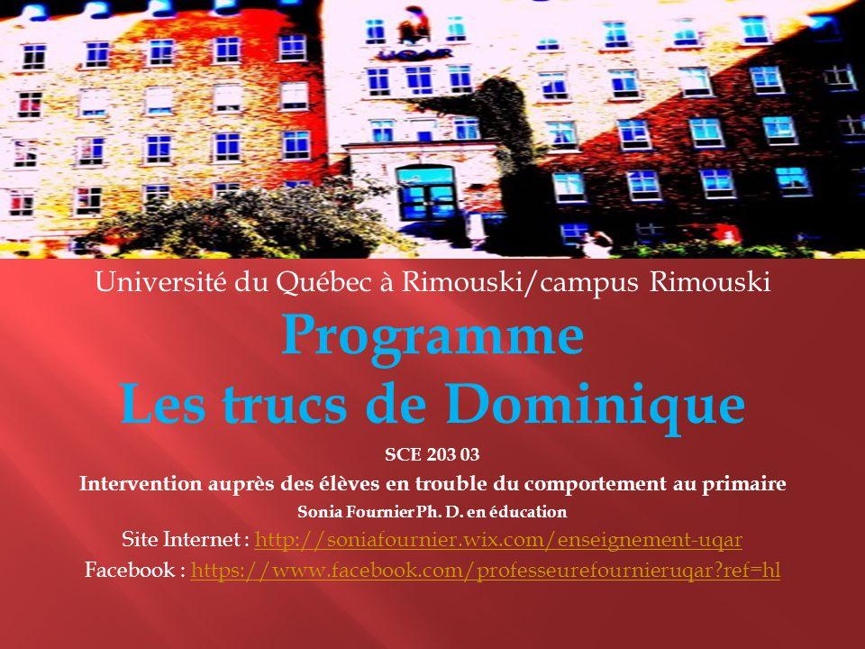 Programme Les trucs de Dominique