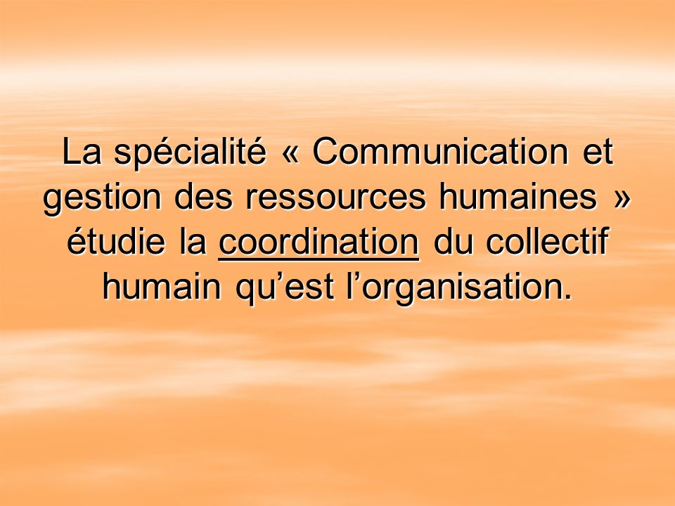 La spécialité « Communication et gestion des ressources humaines » étudie la coordination du collectif humain qu'est l'organisation.