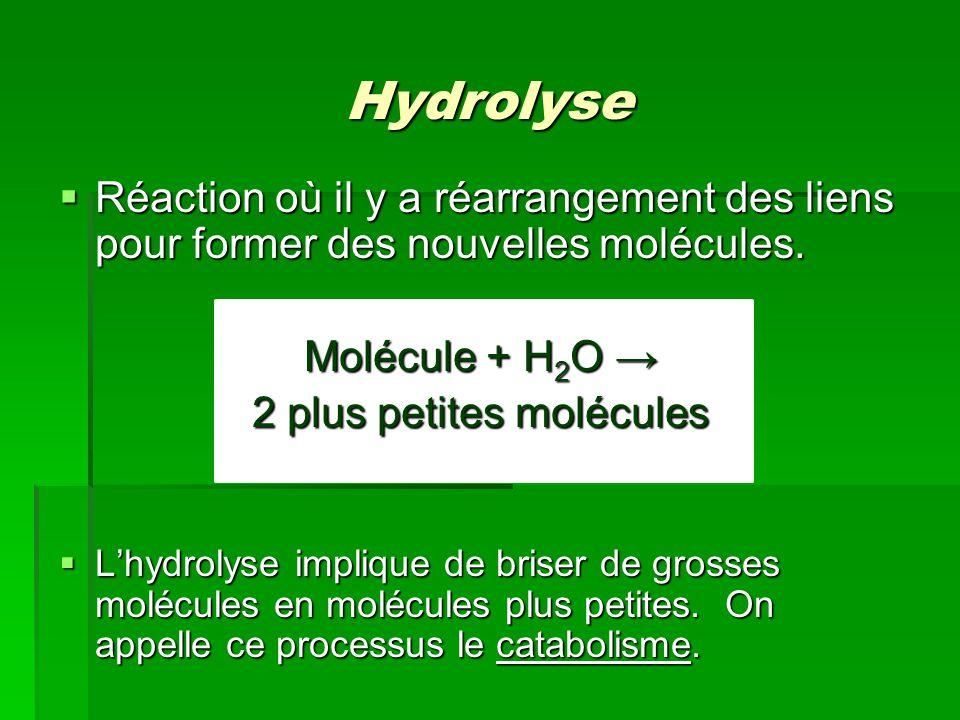 2 plus petites molécules
