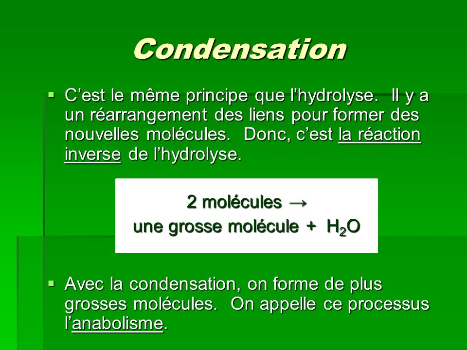 une grosse molécule + H2O