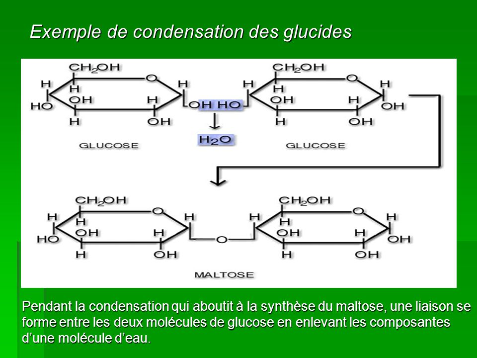 Exemple de condensation des glucides