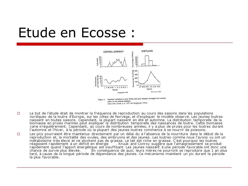 Etude en Ecosse :