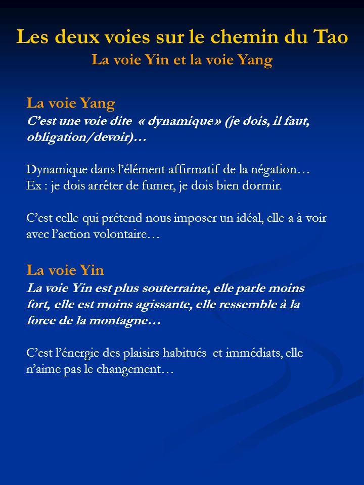 La voie Yin et la voie Yang