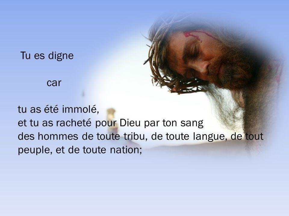 Tu es digne car. tu as été immolé, et tu as racheté pour Dieu par ton sang.