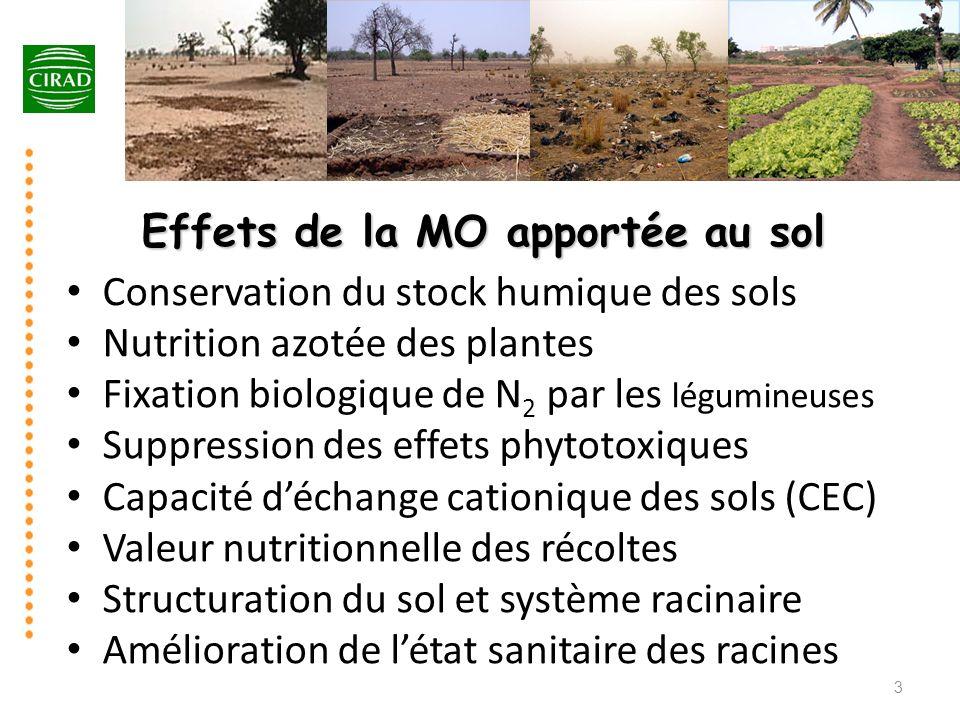 Effets de la MO apportée au sol