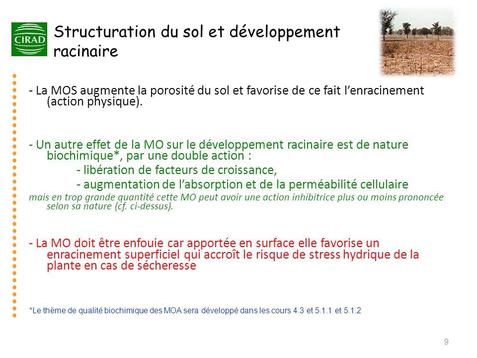 Structuration du sol et développement racinaire