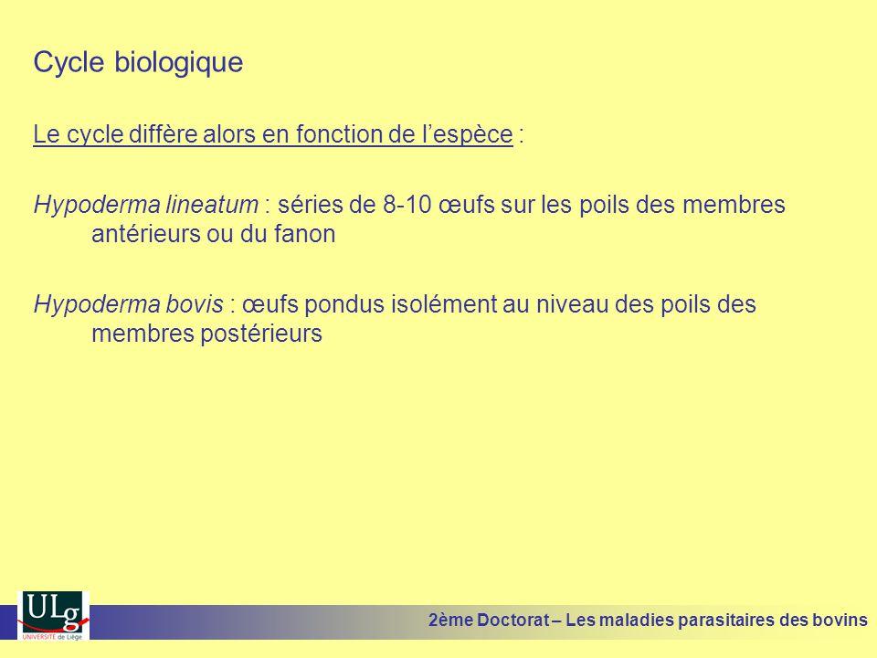 Cycle biologique Le cycle diffère alors en fonction de l'espèce :