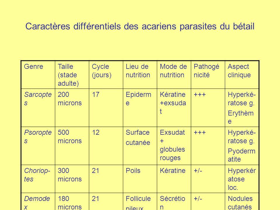 Caractères différentiels des acariens parasites du bétail