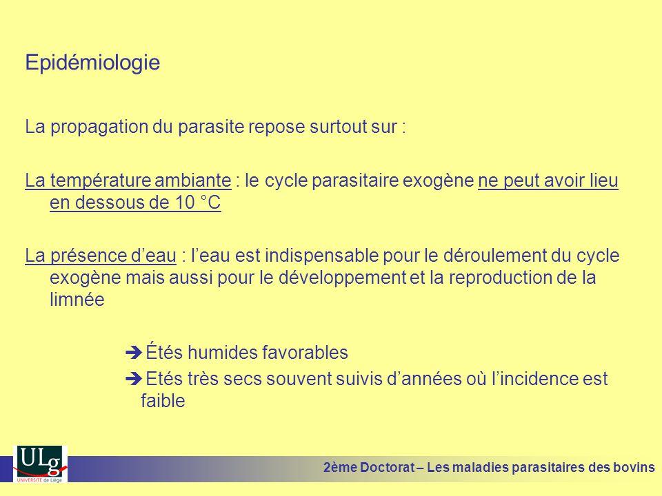 Epidémiologie La propagation du parasite repose surtout sur :