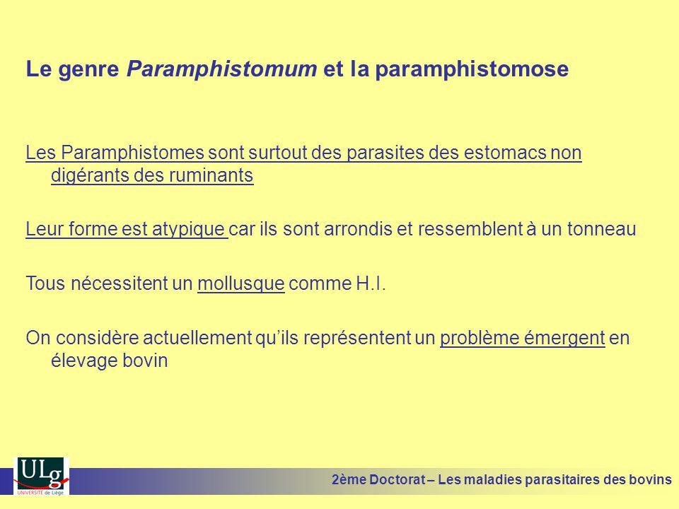 Le genre Paramphistomum et la paramphistomose