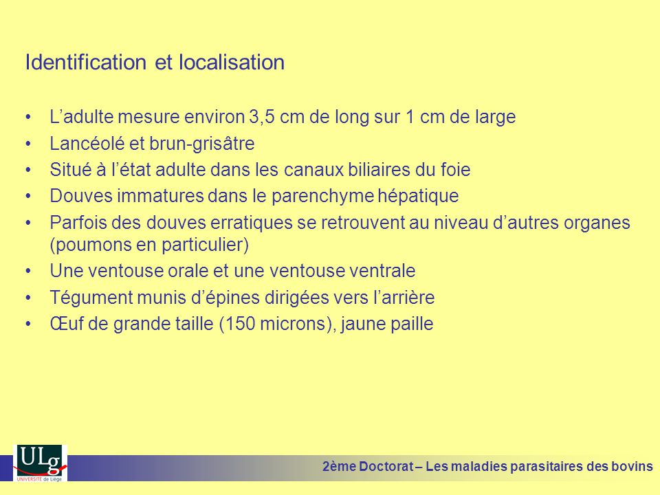 Identification et localisation