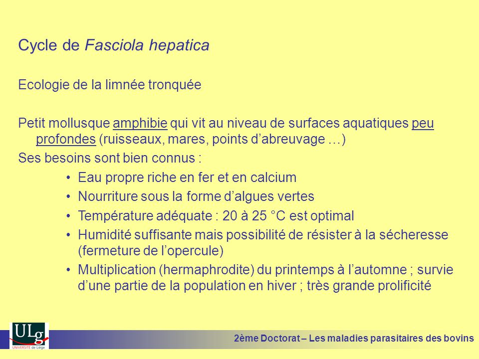 Cycle de Fasciola hepatica