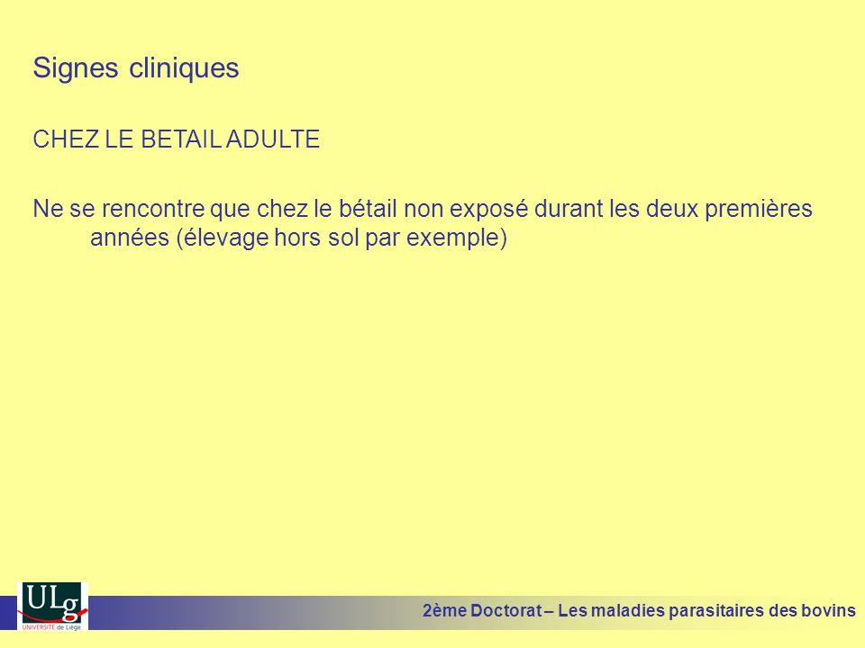 Signes cliniques CHEZ LE BETAIL ADULTE