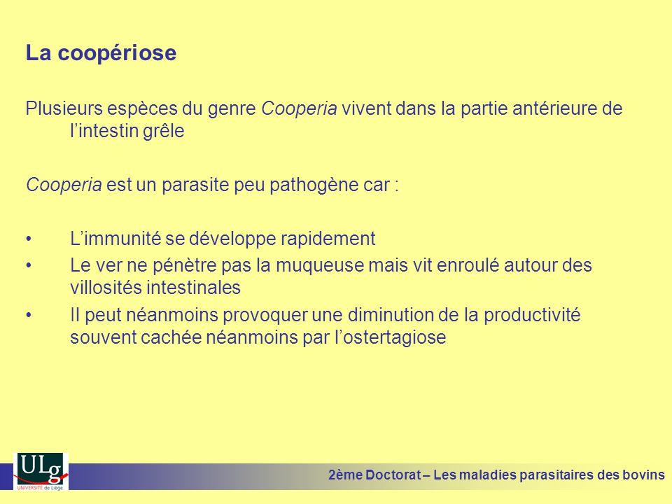 La coopériose Plusieurs espèces du genre Cooperia vivent dans la partie antérieure de l'intestin grêle.