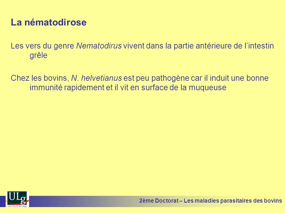 La nématodirose Les vers du genre Nematodirus vivent dans la partie antérieure de l'intestin grêle.