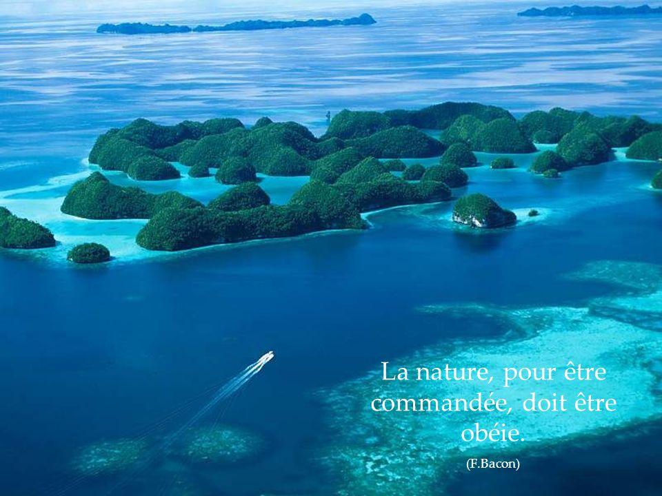 La nature, pour être commandée, doit être obéie.