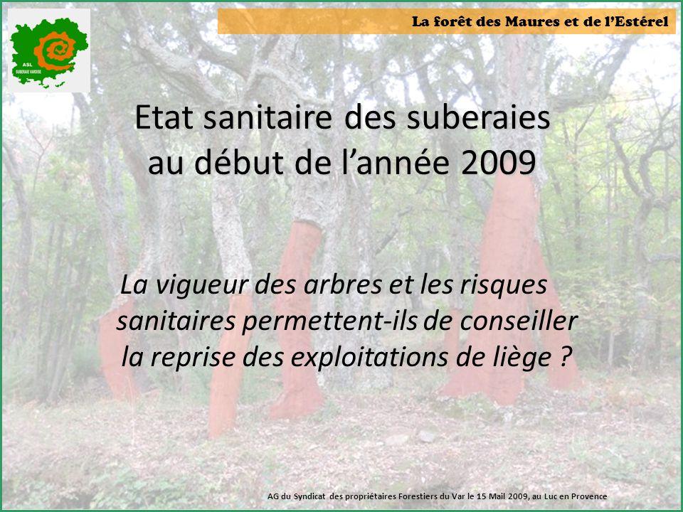 Etat sanitaire des suberaies au début de l'année 2009